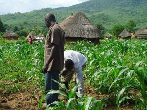 Ba635bdc Nigerian Farmers E1503326726990