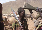 Armed herdsman and his cattles