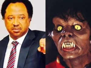 Shehu Sani and Michael Jackson from Thriller music video