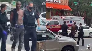 Arrested fan