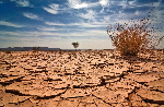 Hadi Sirika says some states will experience drought in 2021