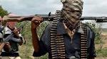 Bandits kill 7 vigilantes in Niger