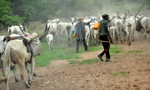 Recently there have been crisis between the herdsmen and the southwest