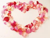 For descriptive purpose only (Valentine)