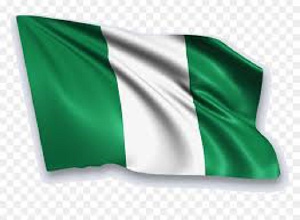The Nigerian flag