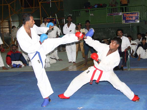 File photo of a Karate competition