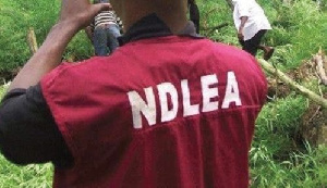 NDLEA official