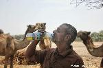 Son of former Nigerian Minister drinks camel urine